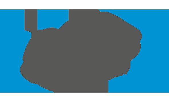 PNS Germany GmbH